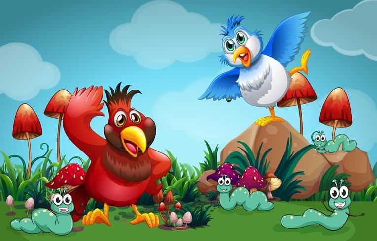 Vögel und andere Insekten im Garten