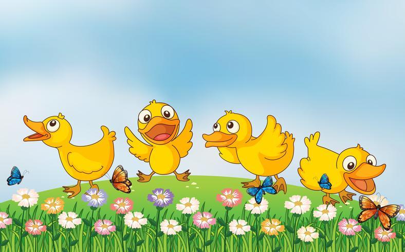 Vier Enten, die im Park spielen