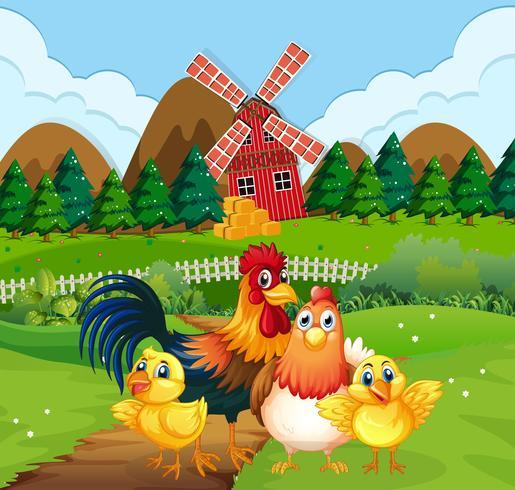 Familia de pollos en tierras de cultivo vector