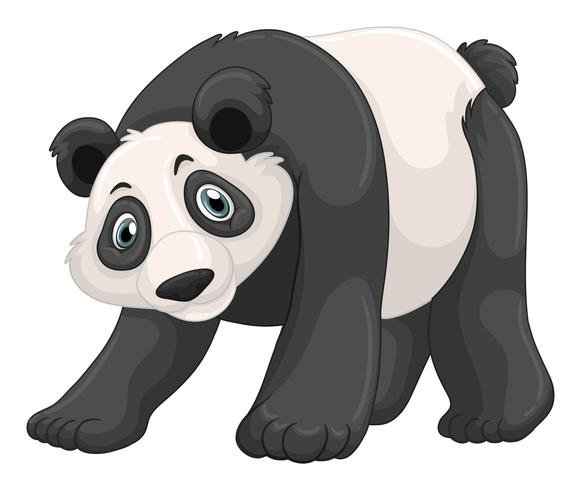 Panda with happy face vector