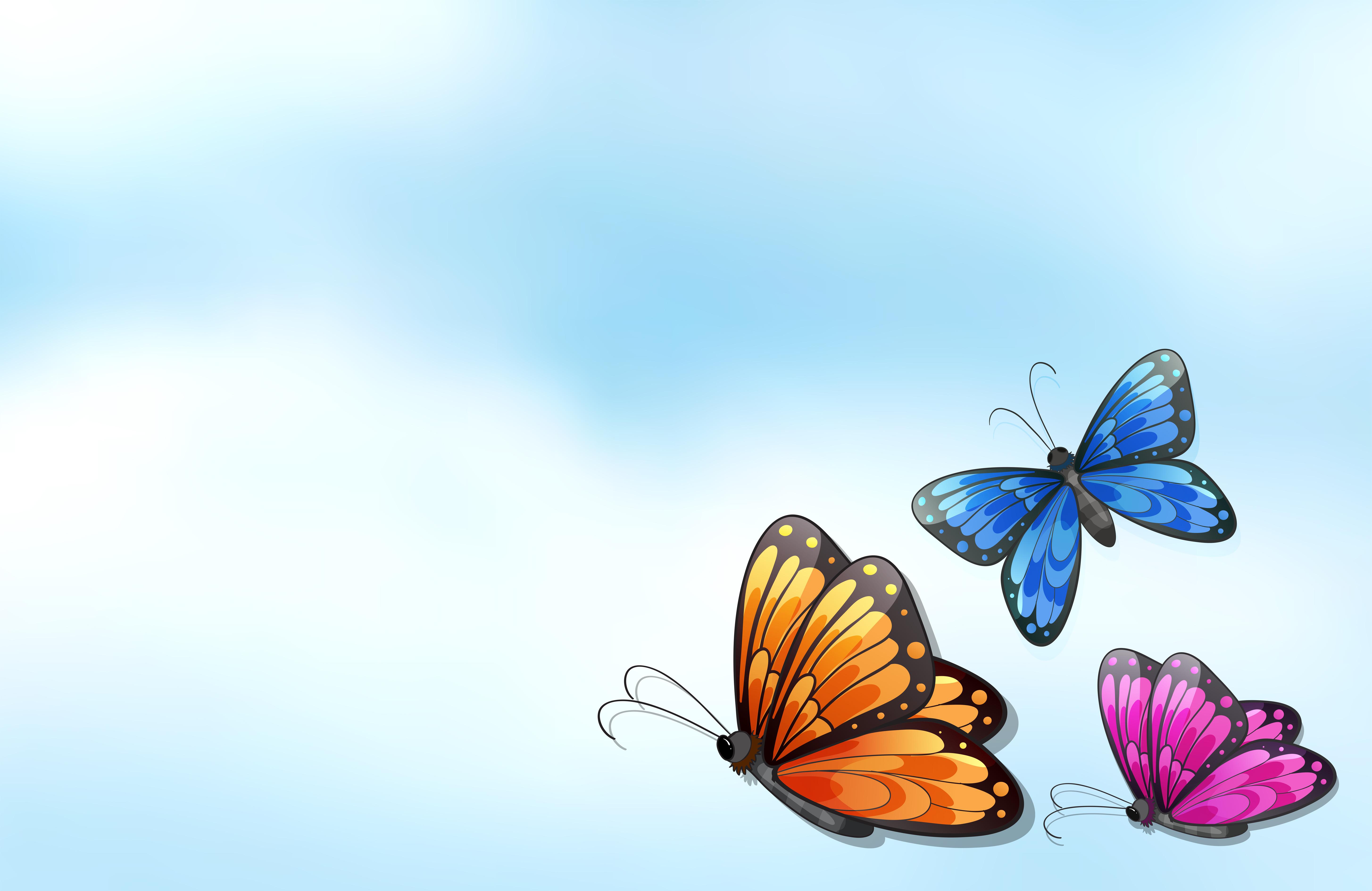 卡通蝴蝶 免費下載   天天瘋後製