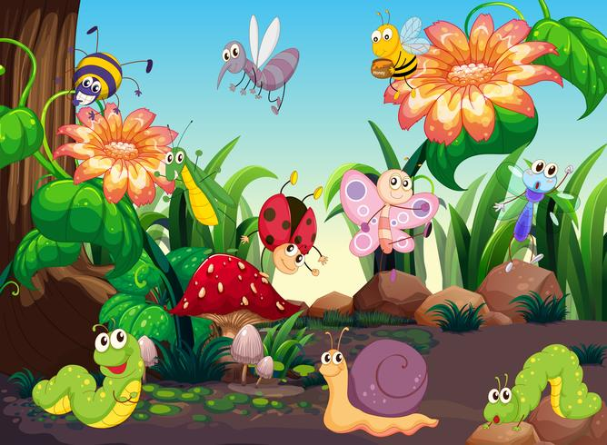 Many insects in the garden vector