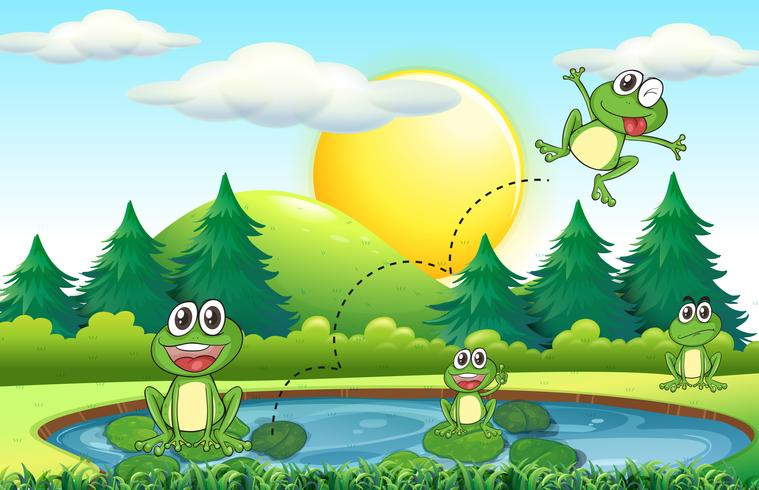 Frogs living by the pond