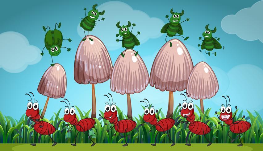 Insectos que viven en el jardín.