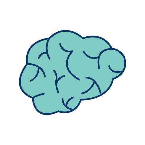 hjärnvektorikonen