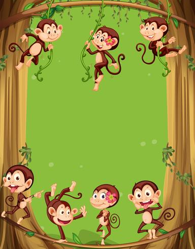 Border design with monkeys on the tree