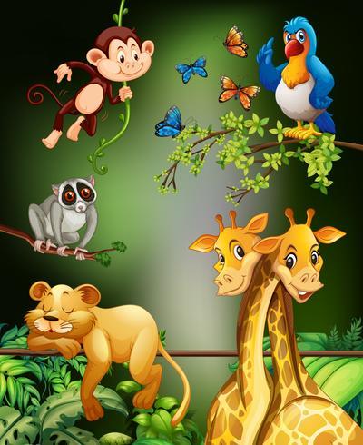 Animali selvaggi che vivono nella foresta vettore