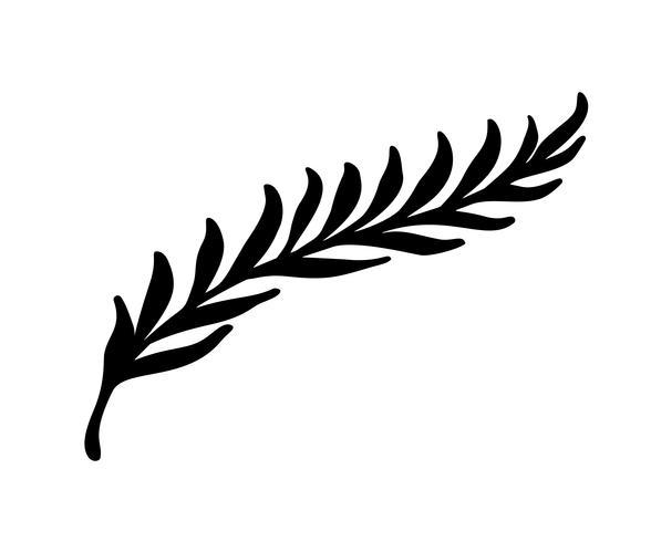 Entregue elementos florais esboçados do vintage do vetor - os redemoinhos da flor das folhas dos louros e as penas. Livre e selvagem. Perfeito para convites cartões, citações blogs quadros de casamento, cartazes