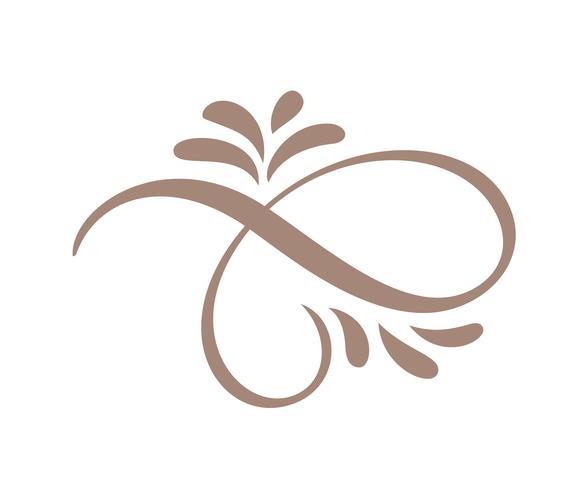 Elementos florales caligráficos dibujados mano del diseño del Flourish de la primavera en estilo ligero aislados en el fondo blanco. Ilustración de vector caligrafía y letras
