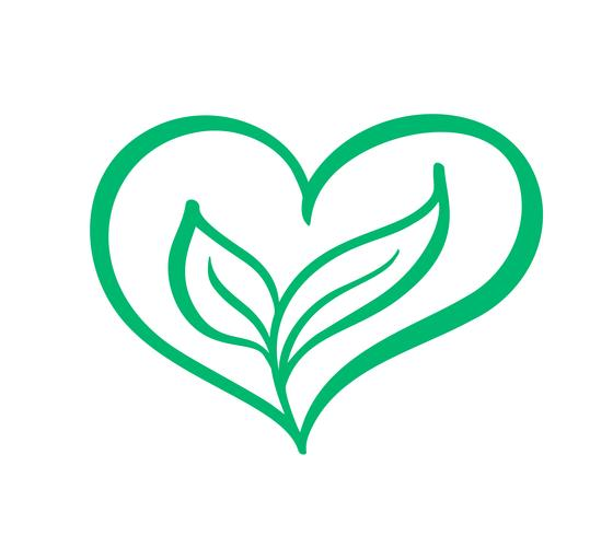 Green vector icon heart shape and two leaves. Can be used for eco, vegan herbal healthcare or nature care concept logo design