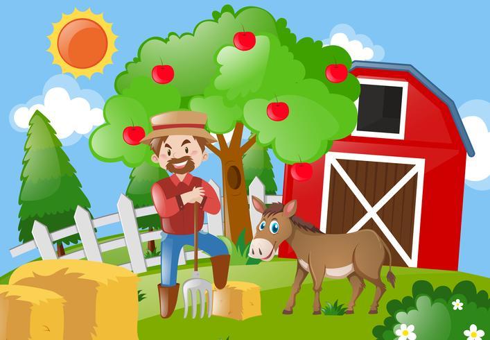 Bauer und Esel auf dem Hof
