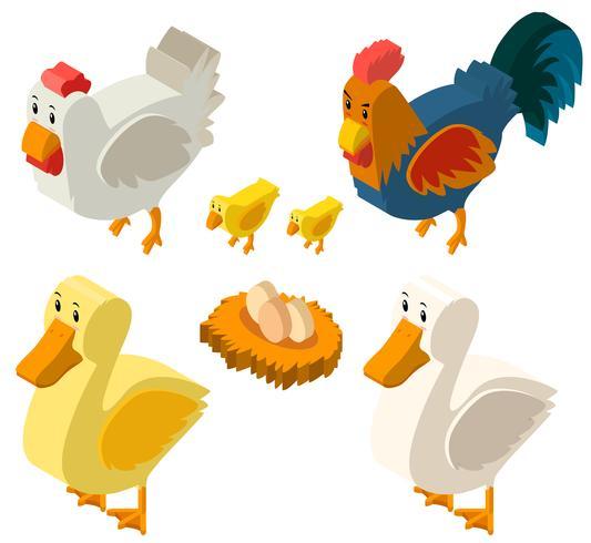 3D-ontwerp voor kippen en eieren