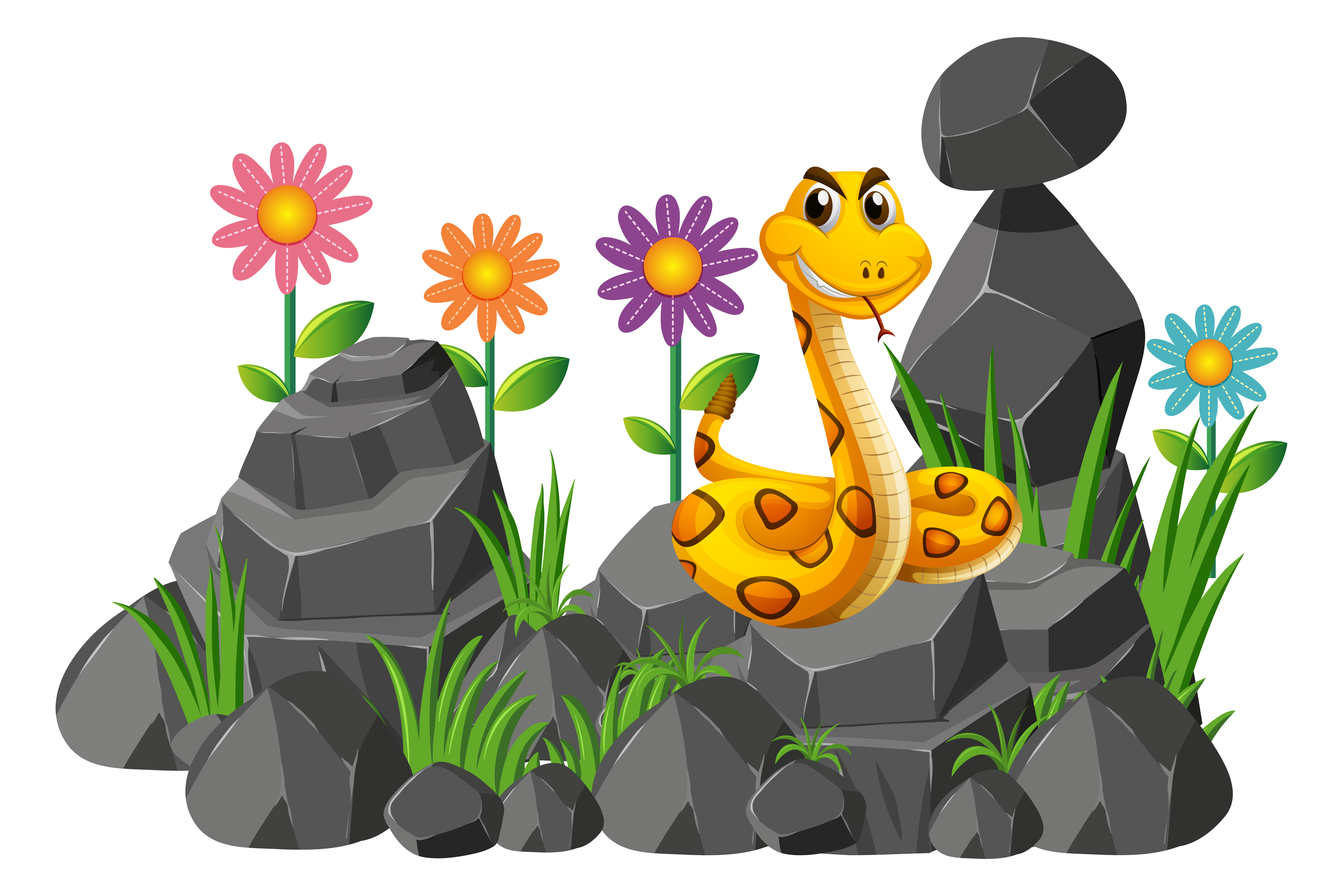 Wild Snake On The Rocks Download Free Vector Art Stock