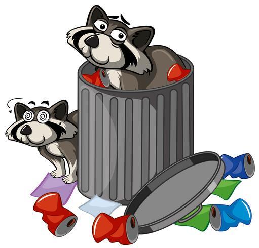 Zwei Waschbären im Mülleimer