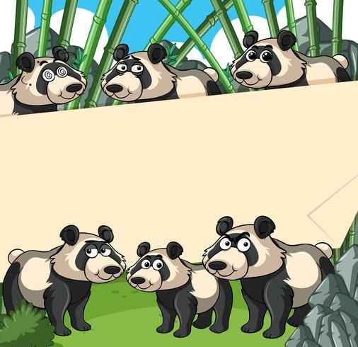 Priorità bassa di carta con il panda nella foresta di bambù