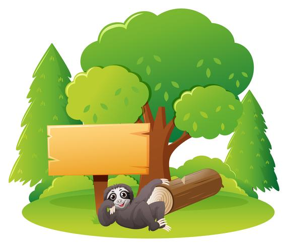 Wooden sign and sloth in forest