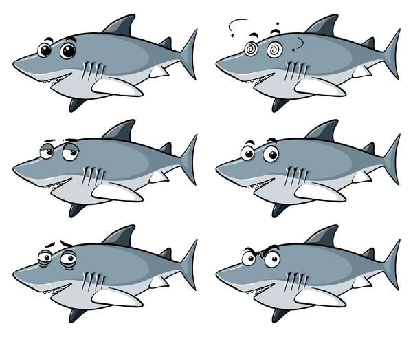 Grand requin blanc avec six émotions différentes