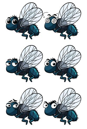 Houseflies with different emotions vector