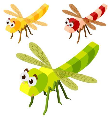 Tre libellule in 3D design