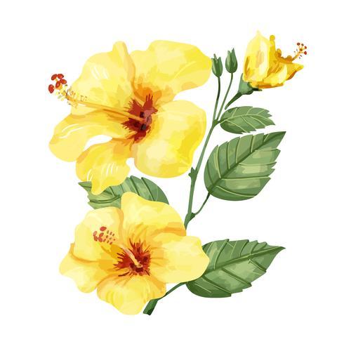 Fleur d'hibiscus jaune dessiné à la main