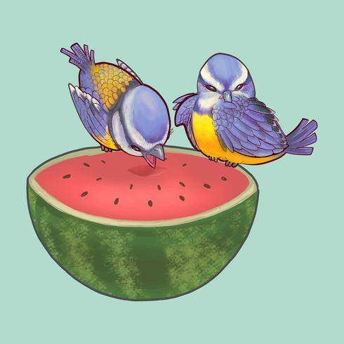 Due simpatici uccelli arroccati su un'anguria divisa in due