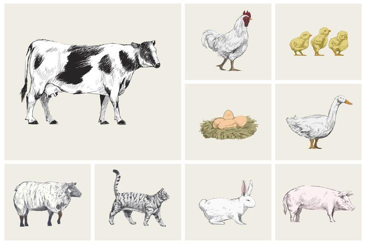 Estilo de desenho de ilustração de coleção animal vetor