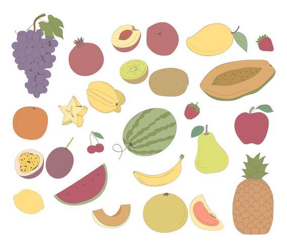 Vektor von verschiedenen Arten von Früchten