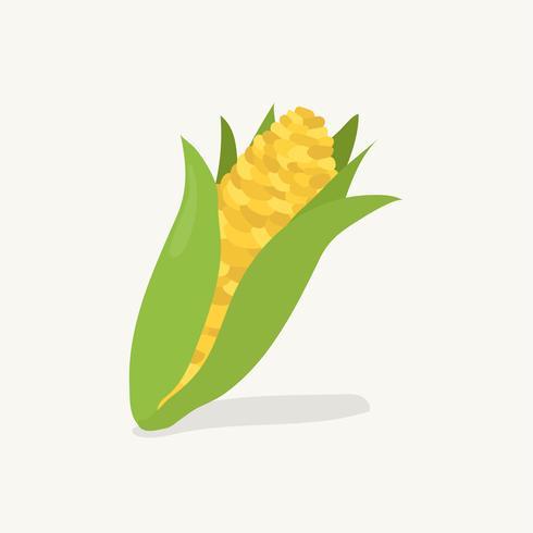 Dibujado a mano ilustración de fruta de maíz