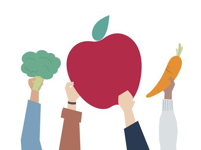 Illustration du concept d'alimentation saine