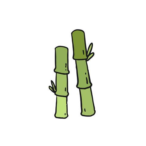 Hand getrokken groene bamboe illustratie