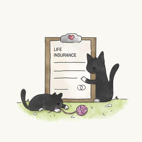 Gatos con seguro de vida.