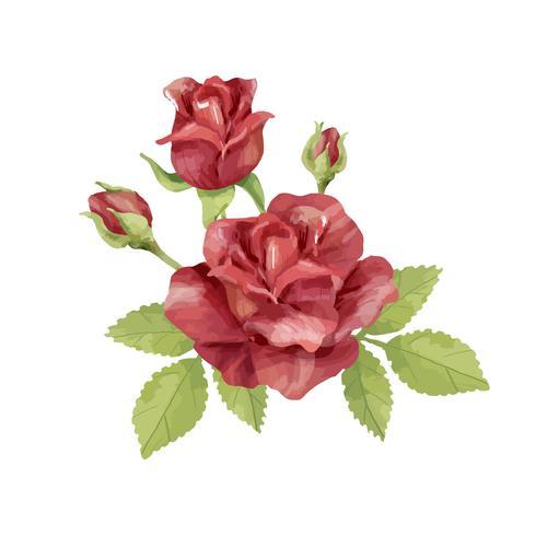 Illustration de fleur rose dessinée à la main