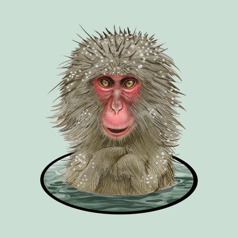 Japanische Makaken in einer Onsen-Illustration