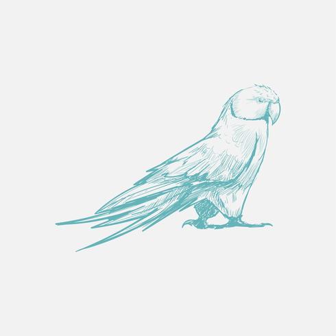 Illustrationszeichnungsart der Eule