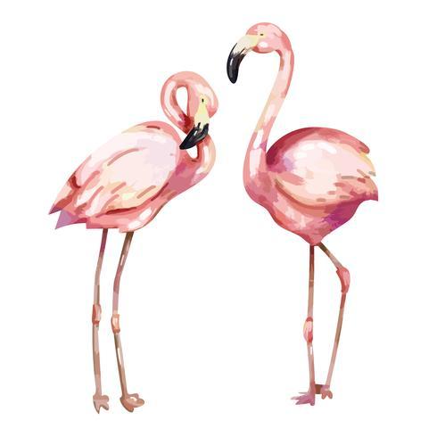 Hand getrokken roze flamingo illustratie