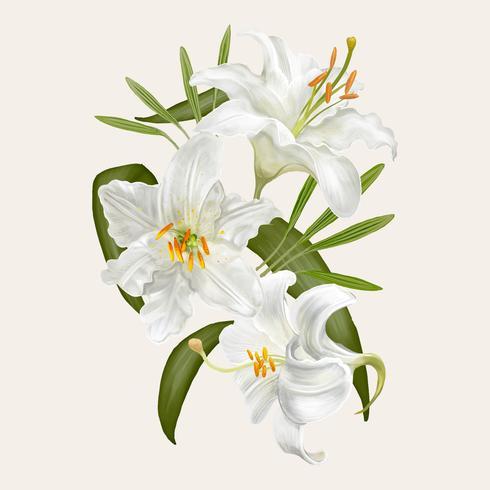 Um monte de flores brancas