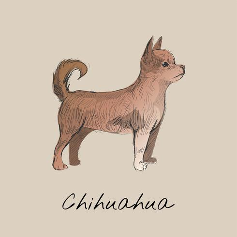 De stijl van de illustratietekening van hond