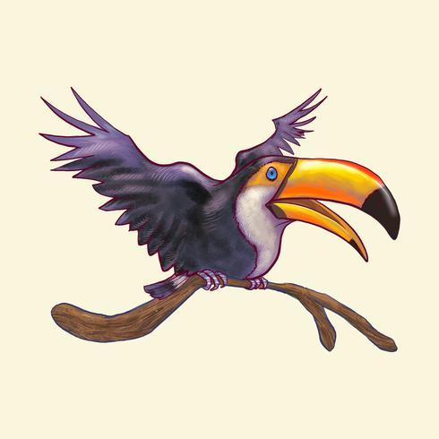 Mano añeja pájaro tucán aislado