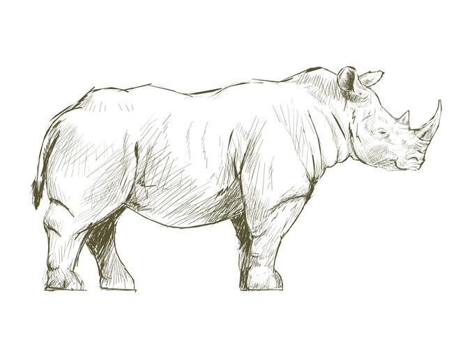 Illustrazione che disegna stile di rinoceronte