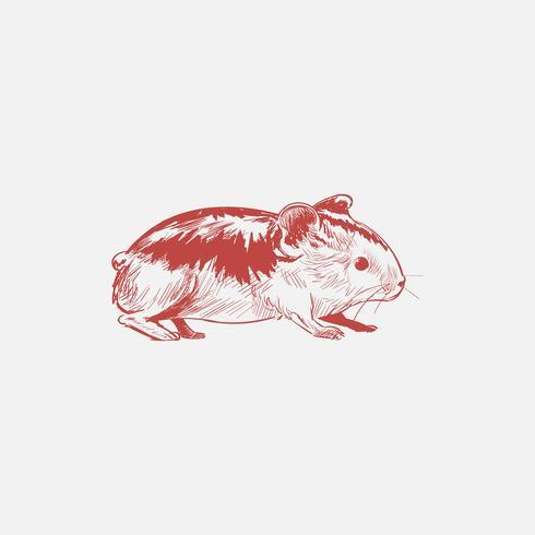 Illustration drawing style of rat