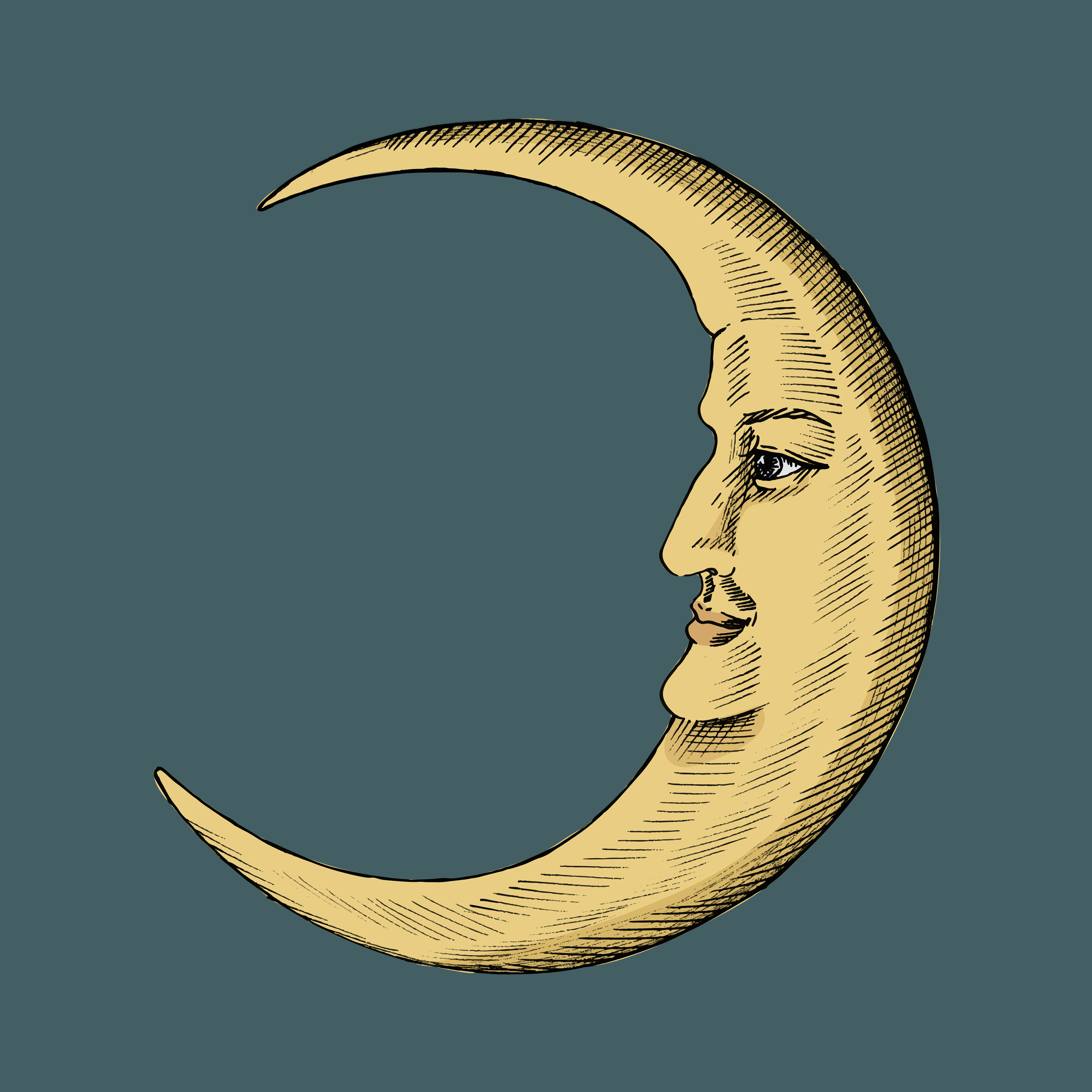 Half Crescent Moon With Face Tattoo: Hand Drawn Sketch Of A Crescent Moon