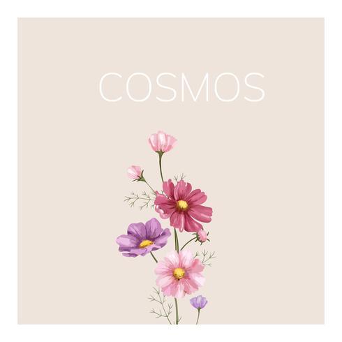 Mão, desenhado, cosmos, flor, ilustração