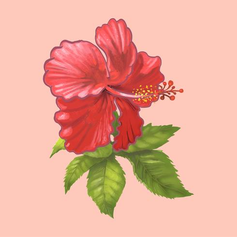 Ilustración de una hermosa flor roja
