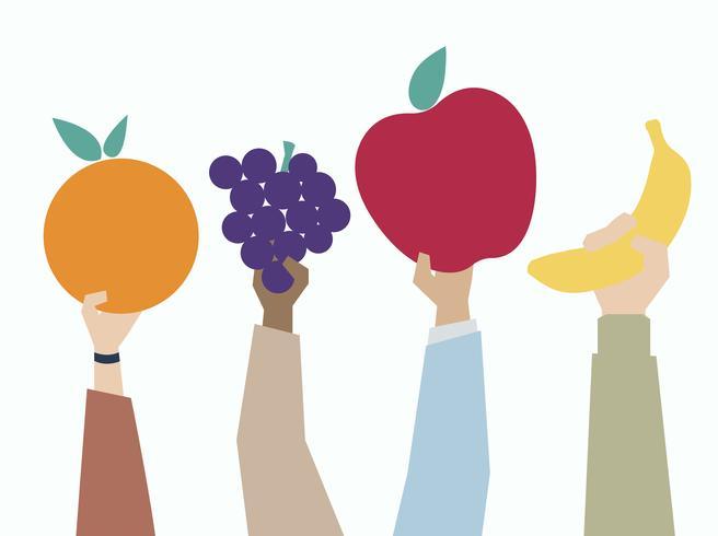 Ilustración de manos sosteniendo frutas