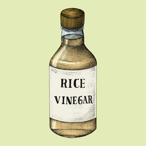 Illustration of rice vinegar