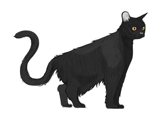 Style de dessin du chat