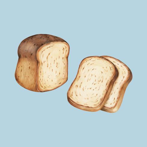 Vers gebakken brood hand-drawn illustratie