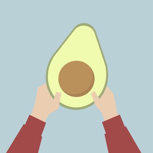 Hands holding avocado illustration