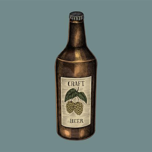 Illustrazione di una bottiglia di birra artigianale