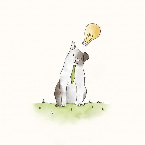 Gato esperto com idéias criativas